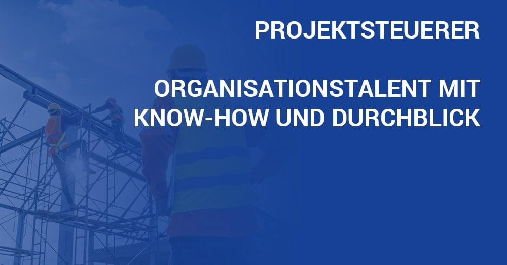 Jobportrait Projektsteuerer Aufgaben