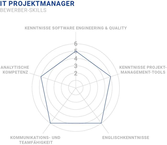 IT Projektmanager Skills
