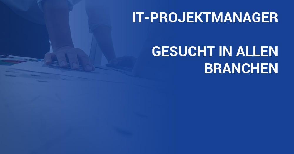 Tintschl-Blog-Titelbild_IT-Projektmanager